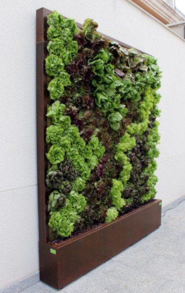 C mo cultivar huertos verticales - Huertos urbanos ikea ...