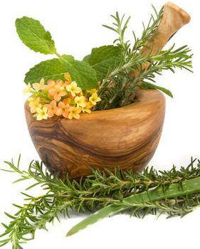 Huerto medicinal: 10 plantas beneficiosas que nos ayudan