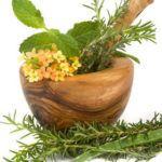 El Farmahuerto: 5 Plantas Medicinales Imprescindibles en el huerto