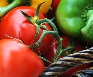 verduras_ecologicas_2012