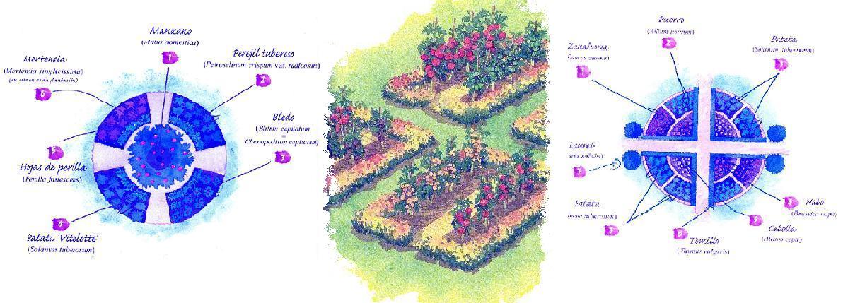 Diseños para huertos decorativos