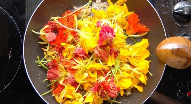 Plantas silvestres comestibles: 10 hierbas y plantas con flores para cocinar