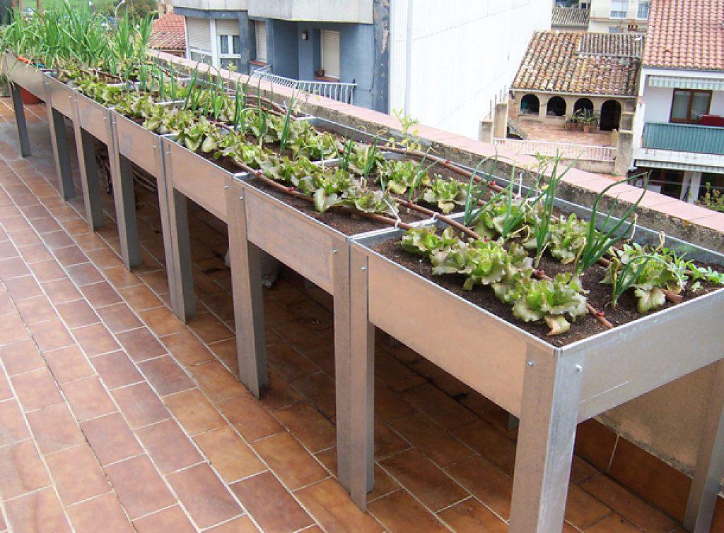 Huerto ecol gico en casa qu se necesita para cultivar un - Jardineras de madera caseras ...