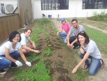 Algunos voluntarios quitando malas hierbas en uno de los bancales del Anken Skyfarm