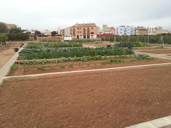 Huerto urbano preparado para plantar en Tomba L'Olla (Valencia)