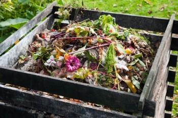 Compostera de huerto urbano