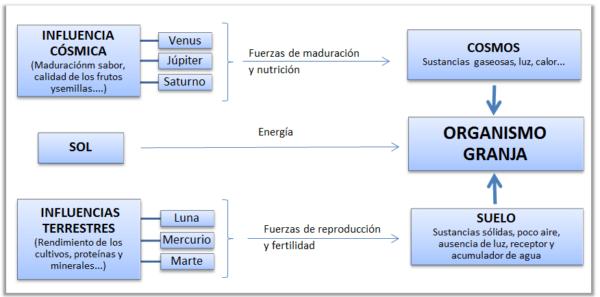Agricultura Biodinámica: Influencias externas en el Organismo Granja