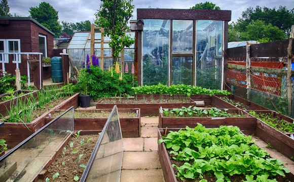 Planificar el huerto 10 aspectos b sicos para empezar a - Como hacer un huerto en el jardin ...
