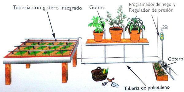 planificar el huerto en un patio