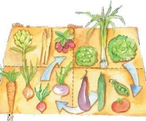 Fuente: http://viverospuenteretamar.blogspot.com.es/
