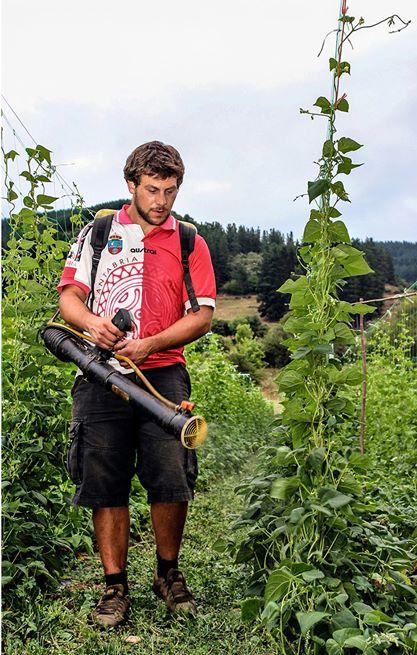 apadrina un tomate, Cantabria