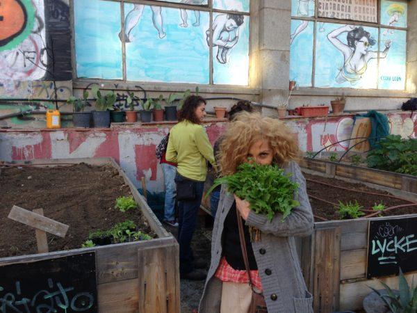 hortelanos del huerto comunitario en Madrid