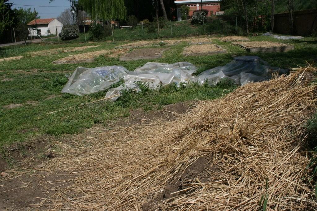 Primer plano: montón de compost. Segundo plano: recipientes con preparados de ortiga y cola de caballo. Tercer plano: bancales con cubiertas de paja