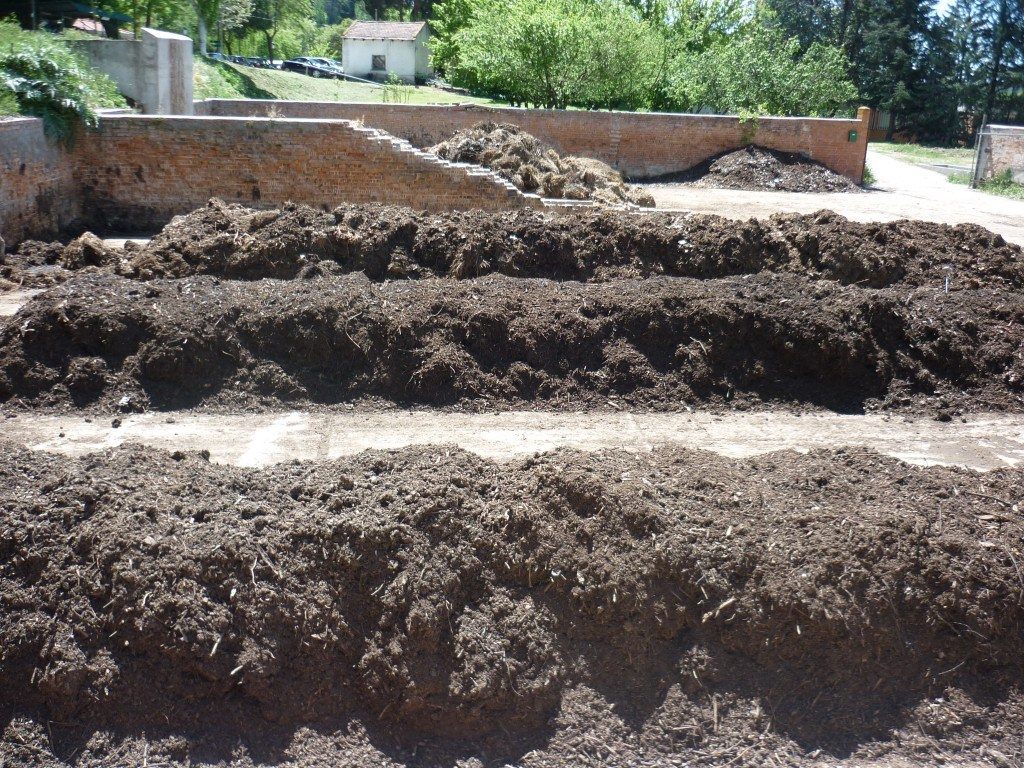 Fertilizantes orgánicos (compost Bocashi y compost tradicional)