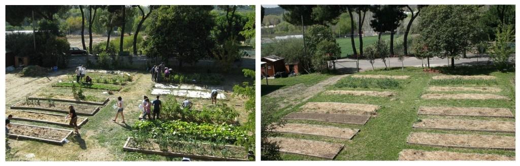 Vista general del huerto ecológico en Agrónomos