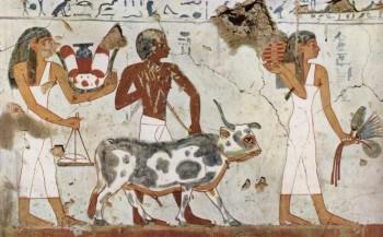 Agricultores en Egipto - es.wikipedia.org