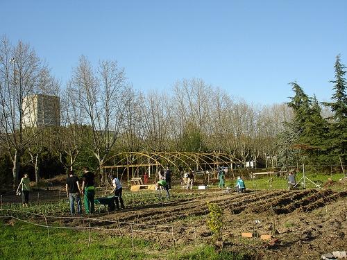 http://portal.ucm.es/web/agroecologia