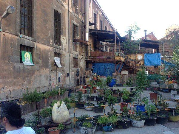 Huertos en el centro de Madrid. Huerto de La Tabacalera