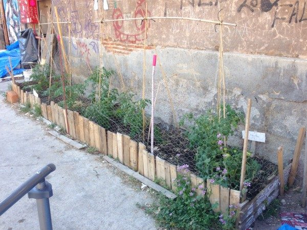 Jardinera de cultivo en huerto urbano