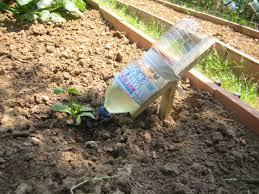 Con creatividad podemos hacer nuestro propio sistema de riego por goteo - www.infojardin.com
