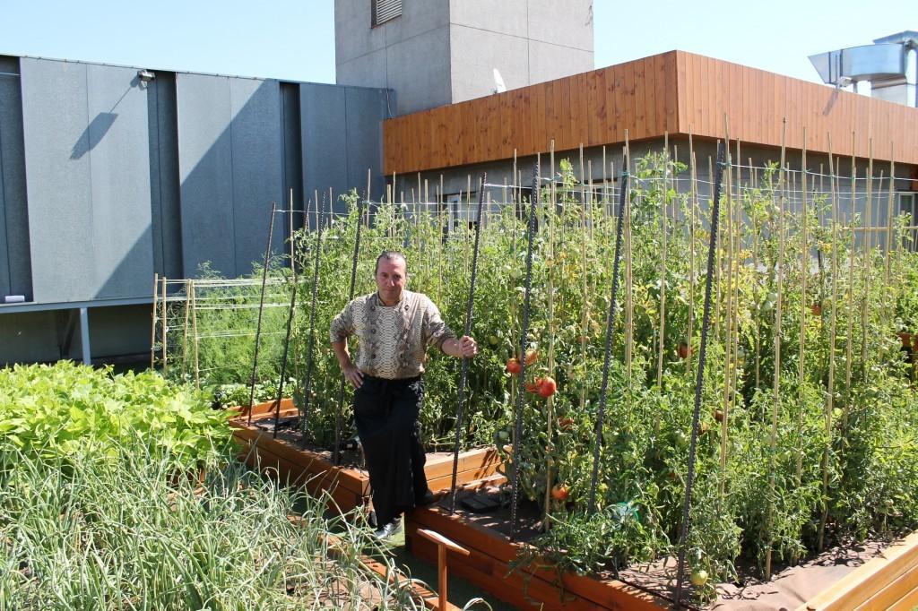 Los huertos urbanos y los adultos mayores parques for El jardin urbano