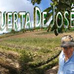 Visitando una huerta tradicional: LA HUERTA DE JOSÉ
