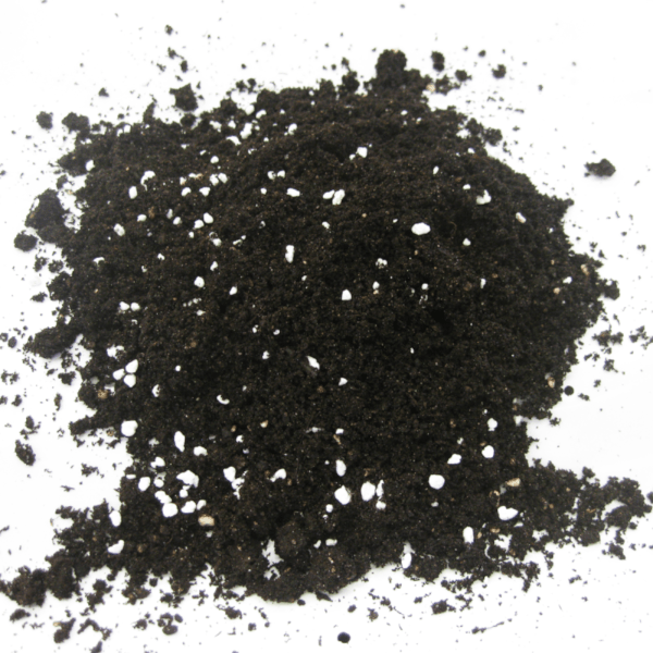 Sustrato de mezcla de turba y perlita