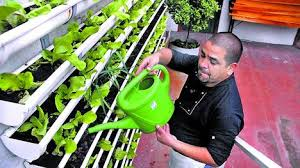 Podemos regar el huerto con una regadera (Fuente: www.taringa.net)