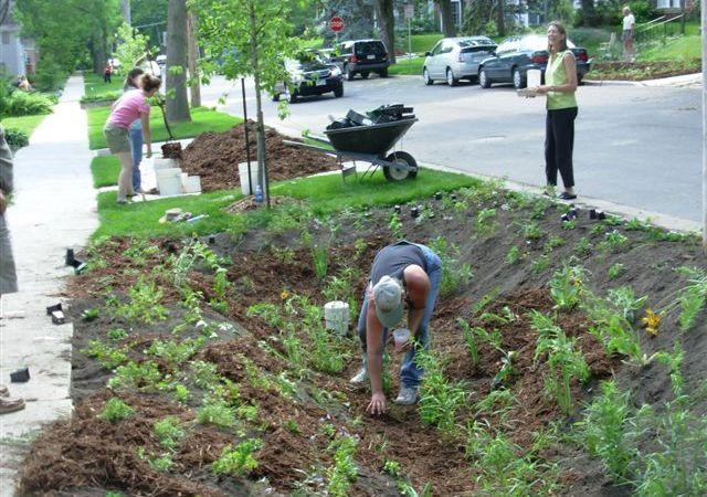 Incorporación del cultivo y retención de taludes (Fuente: www.cityofmadison.com)