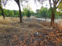 Así estaba el terreno antes de construir el huerto...(www.huertoelcurce.blogspot.com)