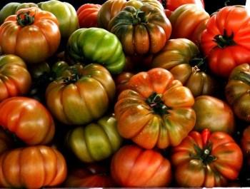 extraer y conservar las semillas de tomate Raf