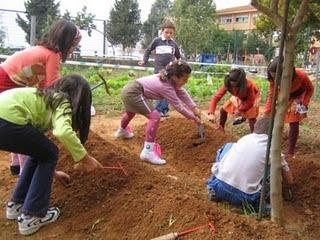 Los más pequeños aprenderán a disfrutar de la verdura y las hortalizas.