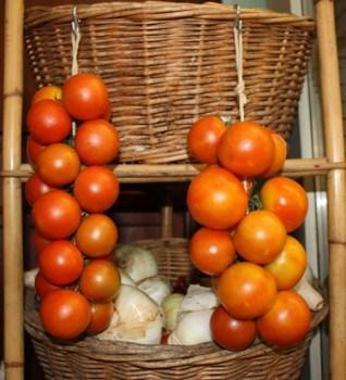 extraer y guardar las semillas de tomate