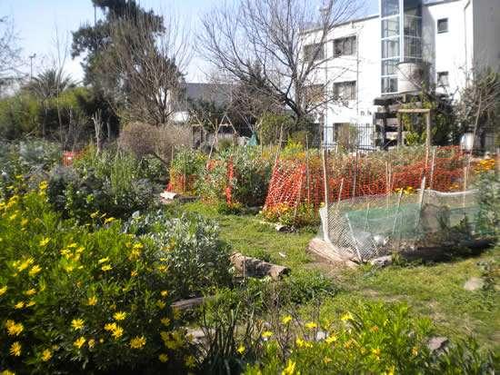 Huerta del Parque Avellaneda (Fuente: www.parrabuenosaires.com)