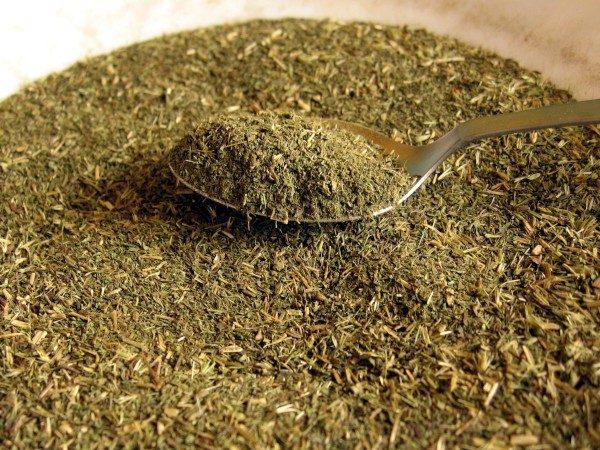 Hojas de Stevia para consumo