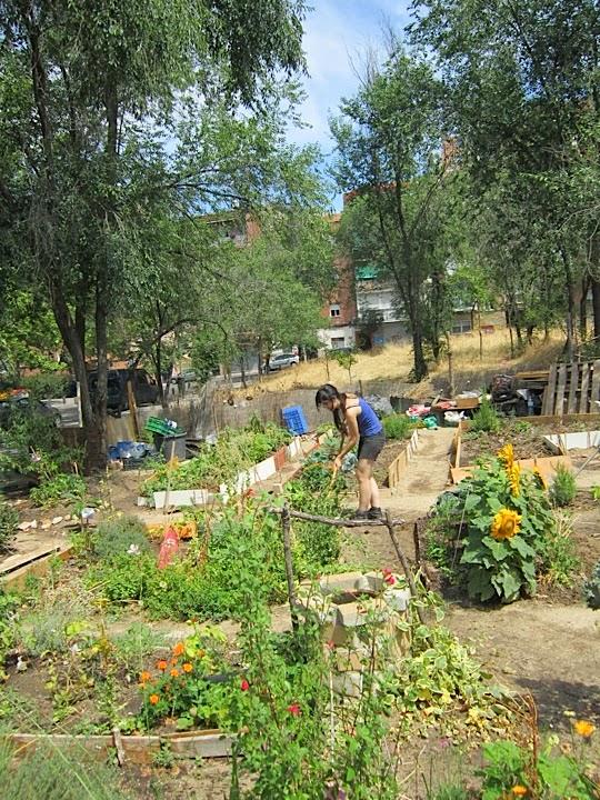 Antiguo Huerto urbano de Lucero. Fuente: http://huertourbanodelucero.blogspot.com.es