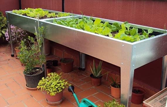 tipos de macetas y recipientes: mesas de cultivo