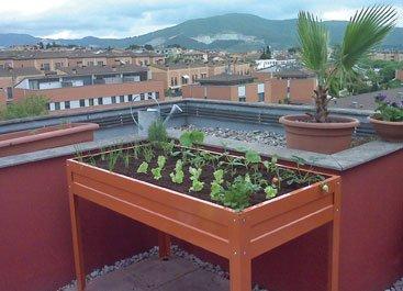 Mesa de cultivo que permite un manejo del huerto cómodo evitando tener que agacharse para las labores del mismo (Fuente: www.mesasdecultivo.net)