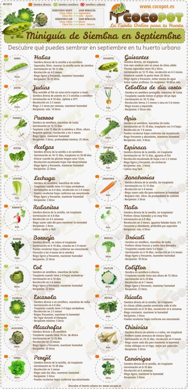 Miniguía de siembra para el invierno. Fuente: http://www.cocopot.es/es/