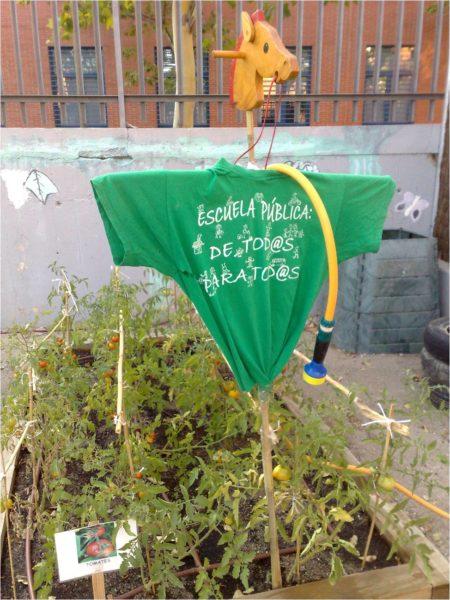 Huerto escolar del CEIP Palomeras Bajas