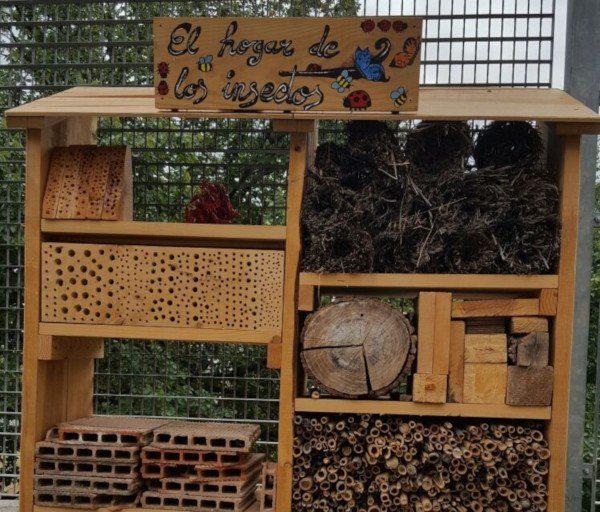 Casa para criar mariquitas en casa y otros insectos beneficiosos
