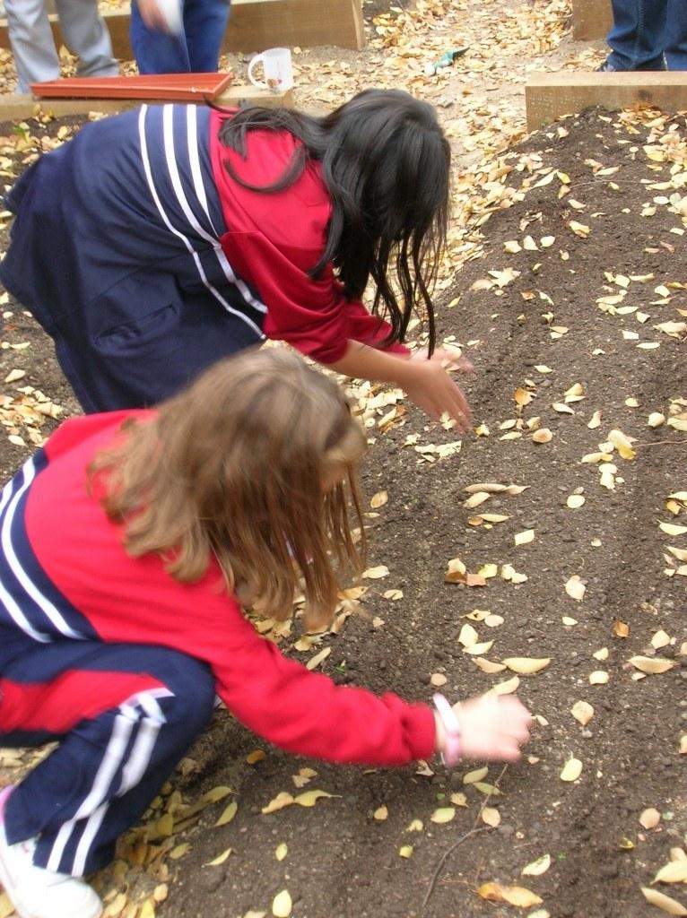 Los niños son los que se encargan de cuidar el huerto. Fuente: www.educa.madrid.org