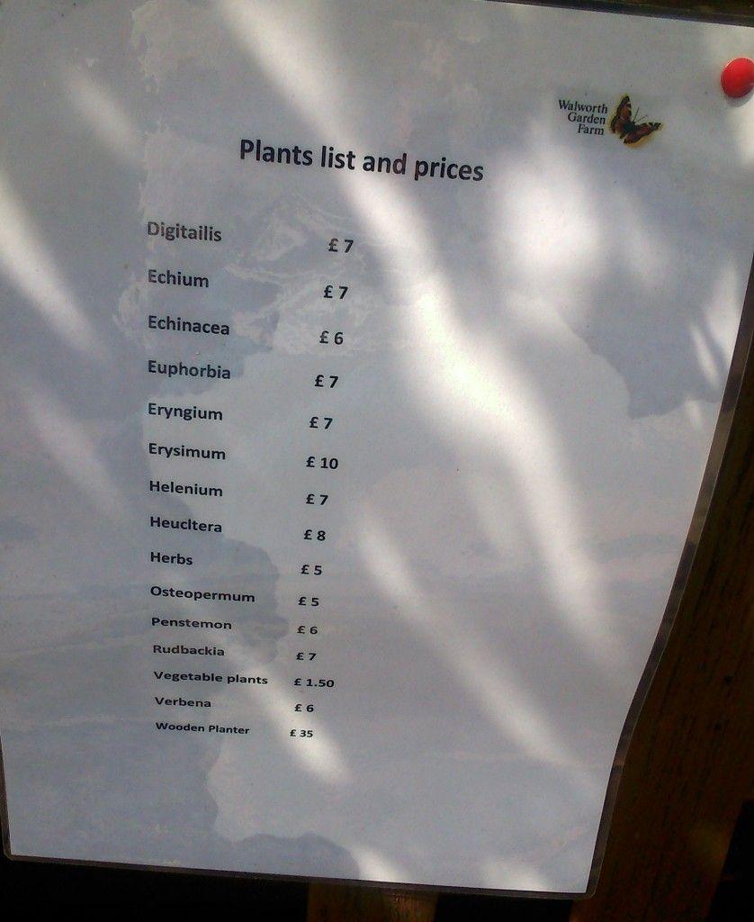 Precios de plantas del huerto en Walworth Garden Farm