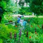 Iniciativas verdes en Londres. OPEN GARDEN SQUARES WEEKEND