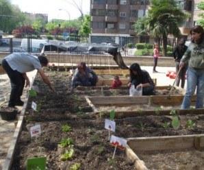 Preparación del Huerto urbano Siglo XXI en Moratalaz (Fuente: www.espormadrid.es)