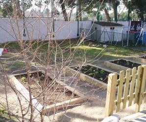 Aquí podéis ver los bonitos bancales del huerto del CEIP Gandhi (Fuente: www.primerciclogandhi.blogspot.com.es)