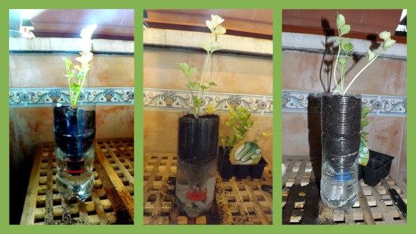 C mo fabricar macetas con autorriego recicladas - Macetas con autorriego ...