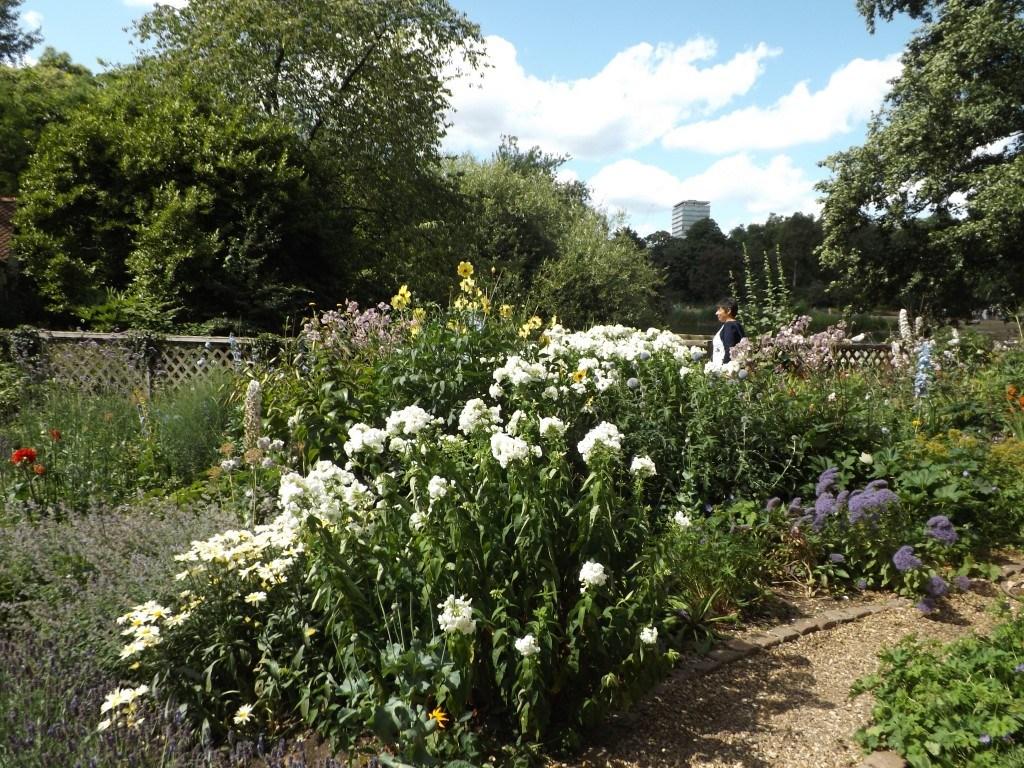 Una maraña de flores y aromáticas que benefician a los cultivos