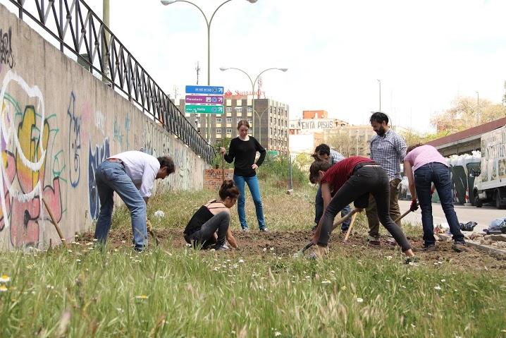 """Trabajos en el huerto de """"La Sanchita"""" (Fuente: www.lasanchita.org)"""
