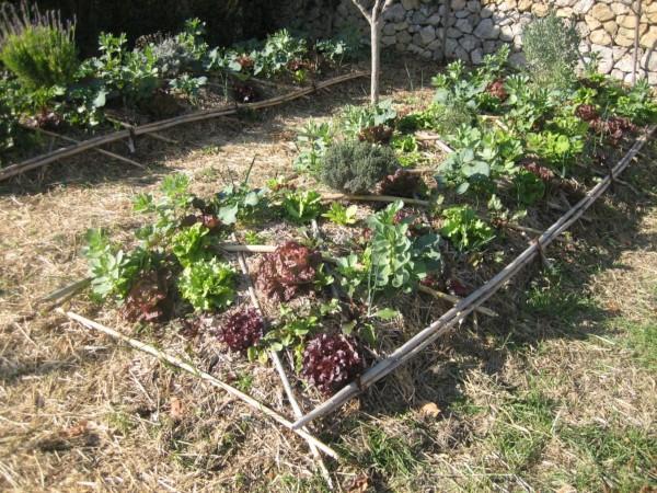 Bancal delimitado con ramas (Fuente: www-granjaescuelailusiom.wordpress.com)